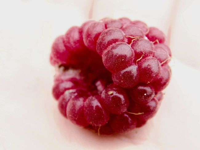 Raspberry Pi Berry Berries Red