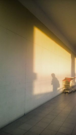 Golden Hour in Metro. The view away from the golden sunset. Golden Hour Mall Grocery Cart Shadow Silhouette