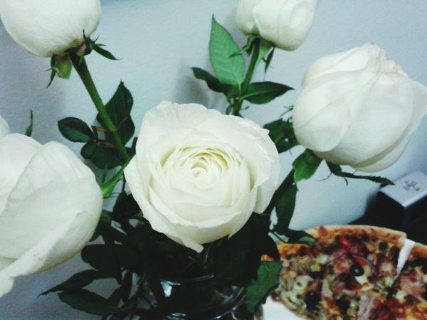 Beauty Nature розы Roses