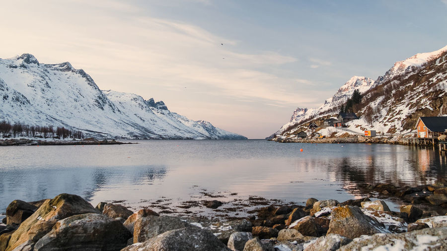 Ersfjordbotn Water Beauty In Nature Winter Rock Tranquility Snow Nature Idyllic Snowcapped Mountain Outdoors Mountain Sky Scenics - Nature Tranquil Scene Reflection Cold Temperature Fjord Tromsø Whale Island Norway Ersfjordbotn Fjords Landscape Lake Contrast