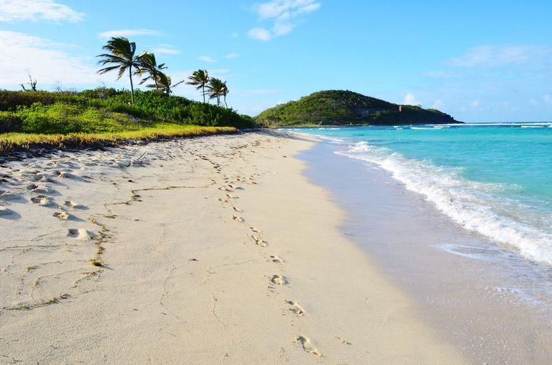 Protecting Where We Play Carribean Sea Beautiful Landscape Beach Paradise