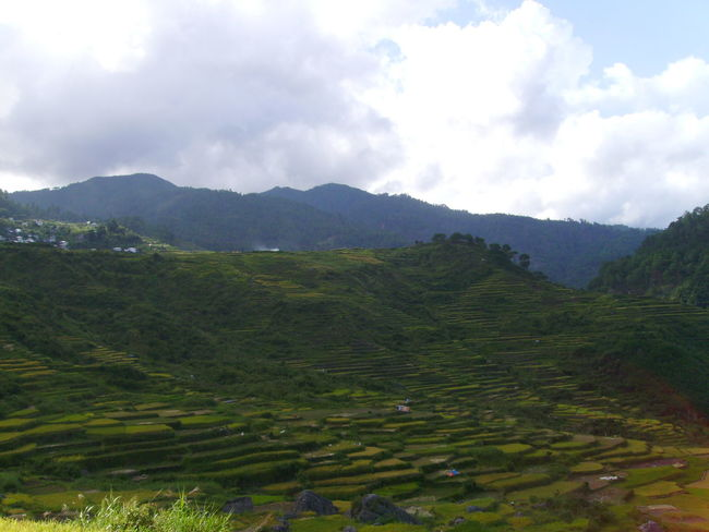 Banawe Mountain And Sky Mountain Farm Mountain Range Photography Rice Rice Patties Rice Terraces Sky Perspectives On Nature