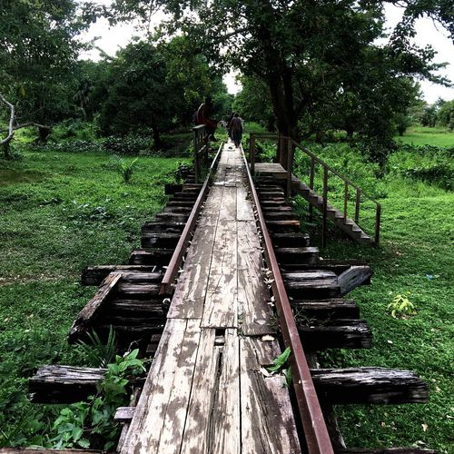 Crossing the broken bridge Plant Tree Nature Growth Diminishing Perspective Day The Way Forward No People Green Color Transportation Direction Outdoors Grass Rail Transportation Railroad Track Tranquility vanishing point Field Land Track