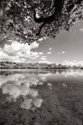 Blackandwhite Photography Lake Reflection Nature Water Tree Sky Scenics Landscape Travel Destinations Beauty In Nature No People Outdoors Mountain Tranquility Day