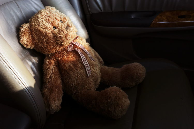 Teddy Bear Lonely Feel In My Car Close-up Day Indoors  No People Secure, Teddy, Accident, Black, Vehicle, Security, Automobile, Stuffed, Protection, Transport, Protect, Toy, Transportation, Part, Alone, Driving, Leisure, Bear, Sitting, Safe, Seat, Cute, Lifestyle, Lonely, Safety, Passenger, Doll, Plush, Trip, Leather,  Teddy Bear