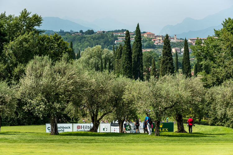 Golf Golf Course Green Tree Champions Day Fairway Garda Lake Good Morning Italy Mountain Walking