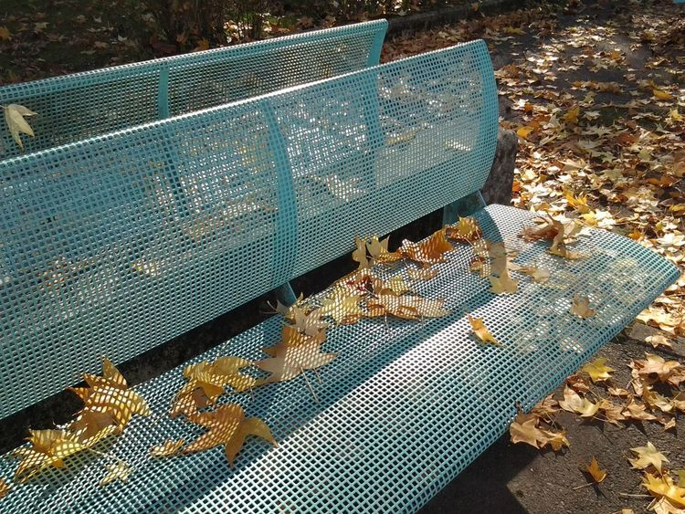 Yellow Leaves Autunm Benches Close-up Day Light Blue Color Metallic No People Outdoors Shadow Patterns Shadows And Light
