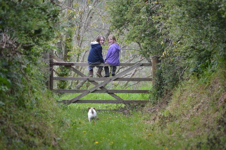 Secret path, ZigZag lane 5-bar-gate Children Dog Walk Gate Hedges Hidden Path Roseland