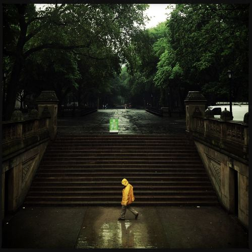 Streetphotography Rain Walking Around At The Park