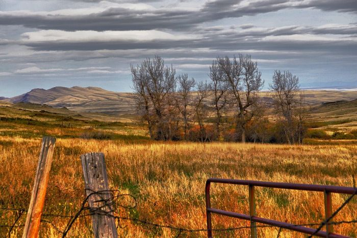 Countryside Tranquil Scene Landscape Fence Field Scenics Beauty In Nature Remote Desolate Solitude Barbed Wire Agriculture Farm Scenic Landscapes EyeEm Best Shots EyeEm Nature Lover Montana Pasture Ranching Fresh On Eyeem  Reds Orange Mountain Range Colorful EyeEm Best Shots - Landscape