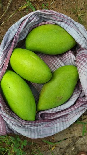 High angle view of green fruits in basket