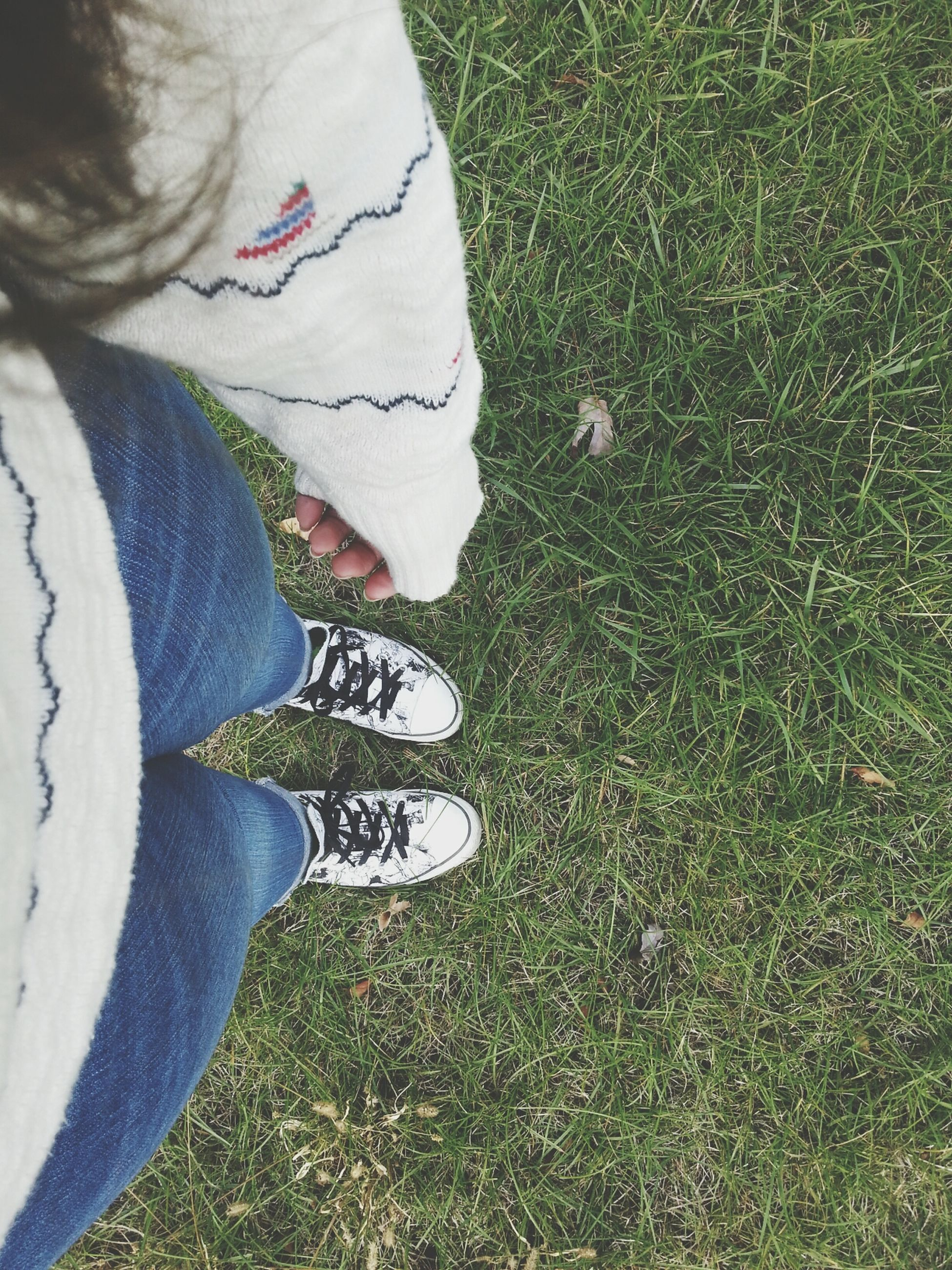 low section, shoe, high angle view, person, grass, lifestyles, leisure activity, standing, personal perspective, field, footwear, grassy, jeans, unrecognizable person, men, canvas shoe