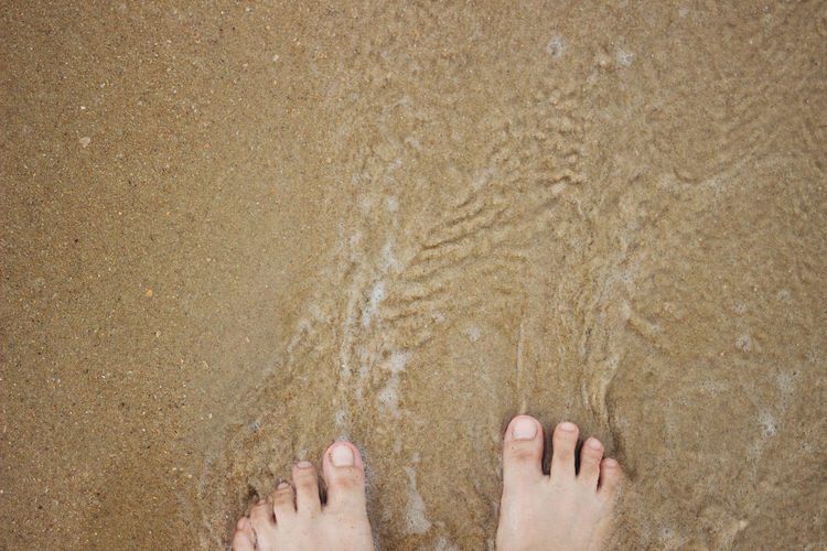 a wave comes in, as I stand and wait. copy space. top down view. Adult Adults Only Barefoot Beach Close-up Day Directly Above High Angle View Human Body Part Human Foot Human Leg Low Section Nature One Person One Woman Only Only Women Outdoors People Sand Top View Vacations Water