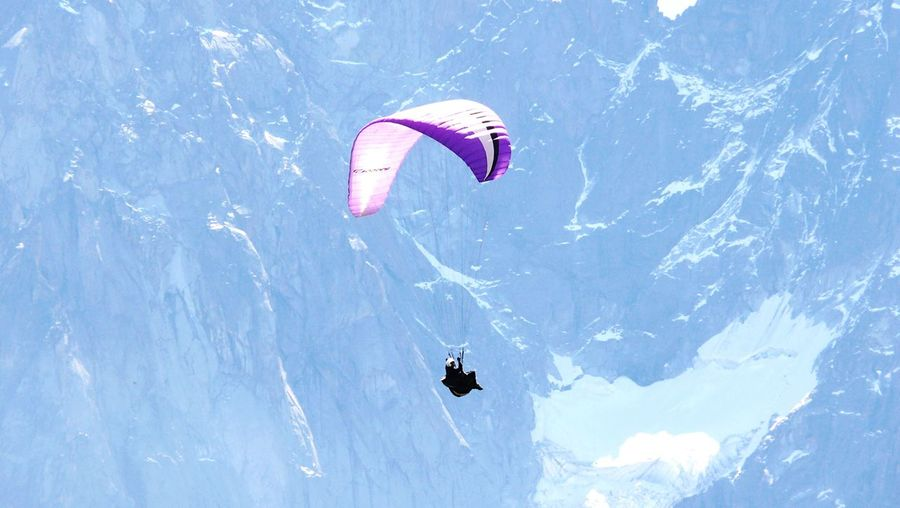 Paragliding Floating Flying Flying High Paragliding Purple Gliding