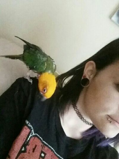 My main baby and I Bird Conure Jenday Conure