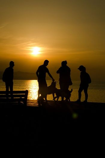 Silhouette people with dogs on wall during sunset