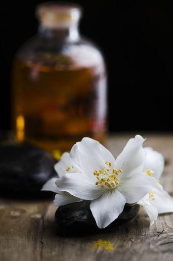 Table Spa Wellness Still Life Wellbeing Zen Close-up Flower Jasmine Massage Oil Essence Essential Massage Oil Aromatherapy Fragrance Scented Aromatic Aromatherapy Oil Product Essential Oil Organic Relax Alternative Medicine