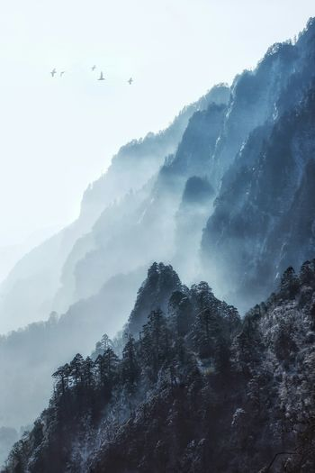 江山如画 Sichuan Emei Mountain Cold Temperature Nature Fog Beauty In Nature Winter Outdoors Snow No People Landscape Scenics Shades Of Winter The Traveler - 2018 EyeEm Awards The Great Outdoors - 2018 EyeEm Awards