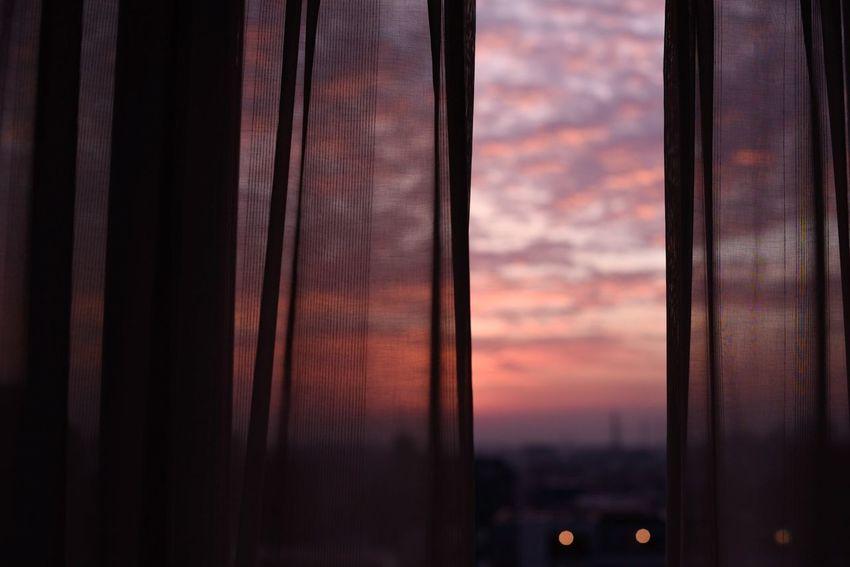 鮮やかな色の光で目を覚ます、静かな朝。 Morning Snapshots Of Life Light And Shadow Golden Hour Magichour