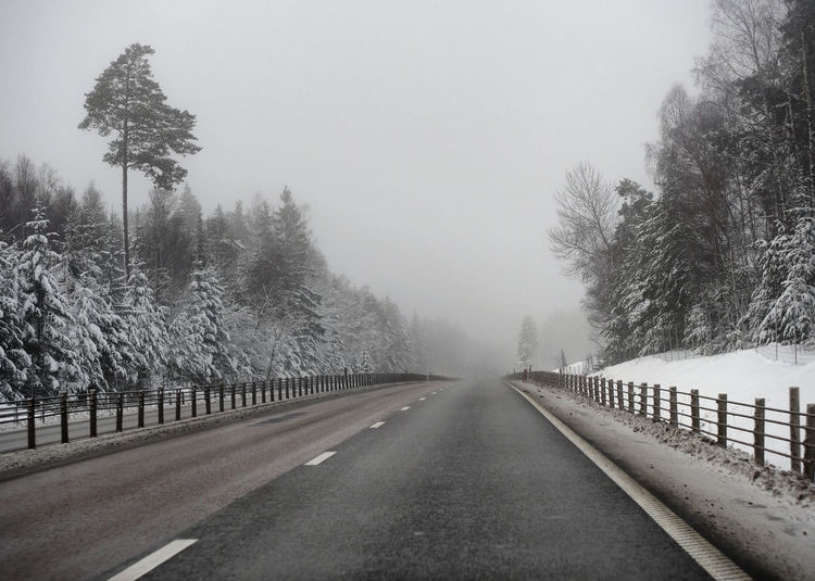fog ahead Road Tree Direction The Way Forward Transportation Plant Diminishing Perspective Fog No People Nature Cold Temperature vanishing point Tranquility Sign Day Sky Beauty In Nature Tranquil Scene Winter Treelined