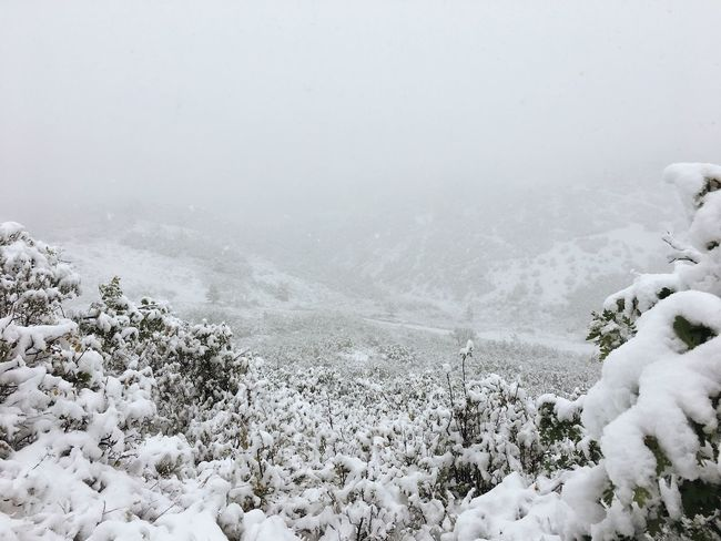 last weekend's early snowstorm. Early Snowfall Utah Wasatch Mountains