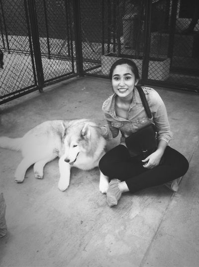 Me and Peter Pan I love him the most cause he called Peter Pan Husky Dog