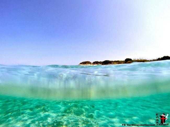 Gopro Underwater Amazing Amazing View Enjoying The View Sea Water Fun Summer Sardiniacoasttocoast