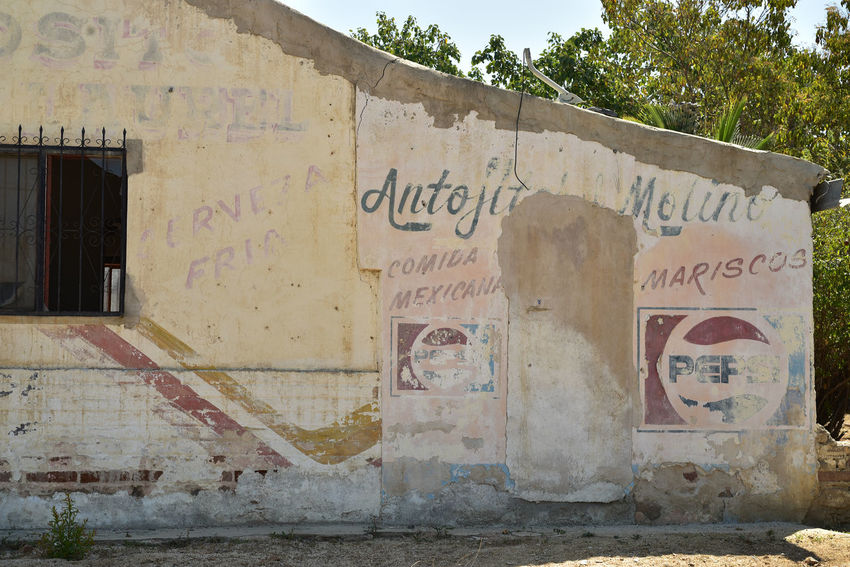 ghost signs of faded paint on wall in Baja California Sur, Mexico Advertising Baja California Sur Ghost Signs  Mexico Signs Spanish Language Vintage Style Advertisement Architecture Communication Day No People Old Retro Design Retro Style Text Wall Wall - Building Feature Western Script