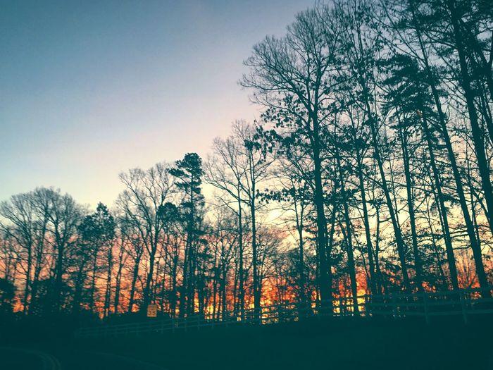 #Cloudscapes #EyeEmLoveOfNature #EyesOnTheSkies #HowISeeTheWorld #MyView #ObsessedWithTrees #PhotographyArtist #ThisIsHowWeDoSunrises #ThisIsHowWeDoSunsets #Winter2018 #WinterIsHere #landscapes