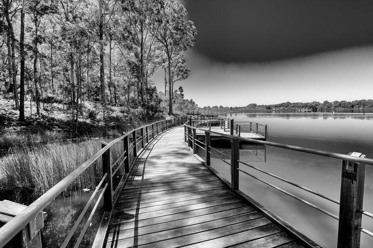 SHADOWS FALLING SOFTLY ACROSS THE PATH. Australia, Black & White Photography Ewin Maddock Dam Queensland, Roger Harrison, Sunshine Coast, Architecture Bridge Built Structure Connection Dam Day Footbridge Fresh Water Supply Nature No People Outdoors Plant Public Water Reserves Railing Sky The Way Forward Tranquility Tree Water