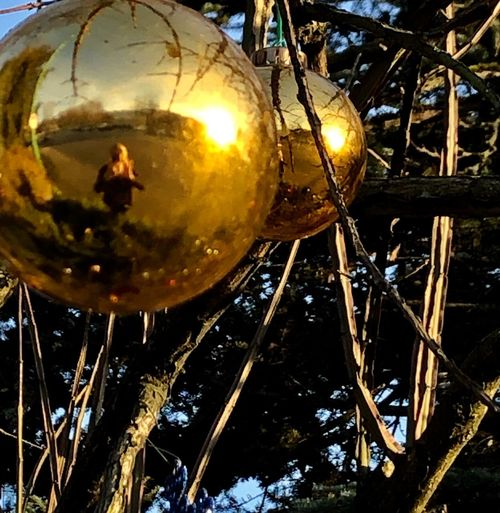 Ornaments No People Decoration Hanging Close-up Reflection Low Angle View Shiny Celebration Night Lighting Equipment Metal Sphere Holiday Nature Tree Outdoors Christmas Decoration Christmas Disco Ball Christmas Ornament