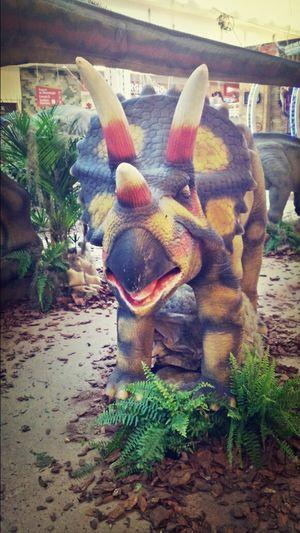 Dinossauro Rio Preto
