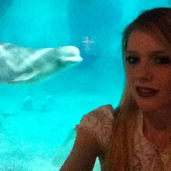 Beluga Selfie!!! Aquarium Instafish Swimming Tropical Aquaria Photooftheday Saltwater Beautiful Ocean Watertank Beluga Whale Love Amazing Igers Tflers Animallover All_shots