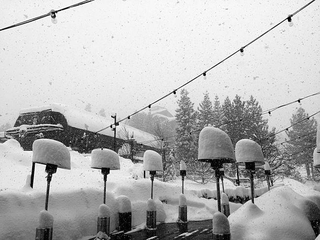 Mammoth powder Snow Outdoors Nature Powder Blackandwhite Iphonephotography