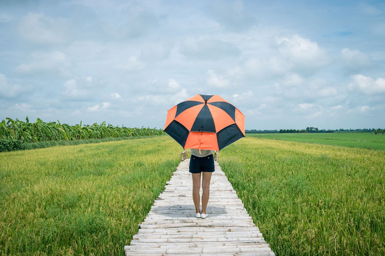 Rear view of woman with umbrella standing on footbridge amidst field against sky