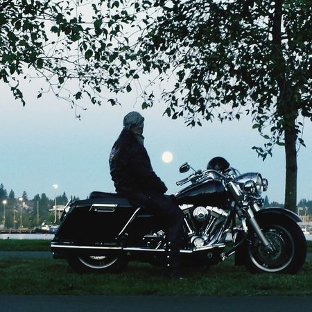 A man and his bike. Full Moon 🌕 One Man Only Only Men Outdoors One Person Tree Sky Harley Davidson Road King Motorcycle Its A Beast Eyeem Photography With A Smartphone Secret Places Waterfront Parks And Recreation 2 Wheels Chrome A Man And His Motorcycle