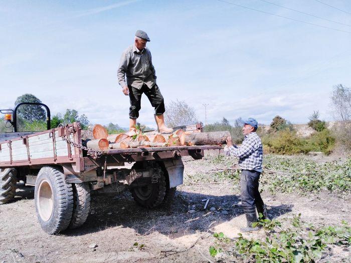 Men loading logs on truck
