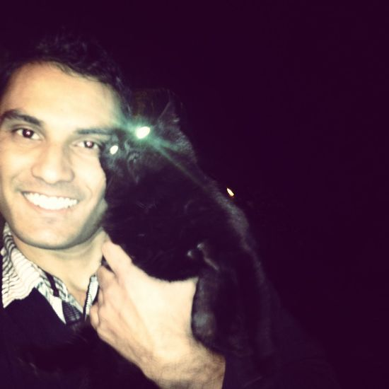 Just love catz