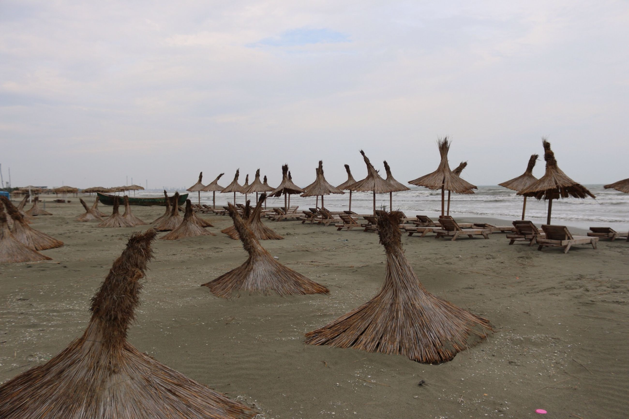 beach, sand, sea, water, sky, shore, bird, tranquil scene, tranquility, animal themes, nature, scenics, animals in the wild, wood - material, wildlife, beauty in nature, in a row, day, outdoors