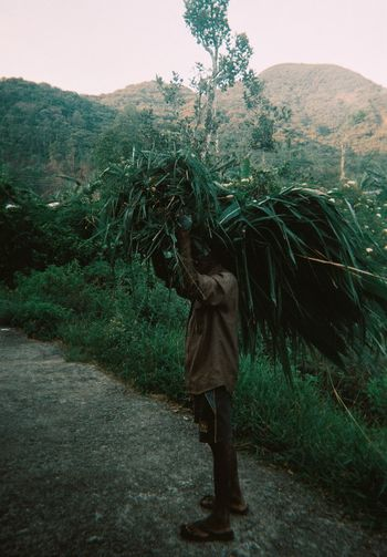 Man with heap of grass walking on road