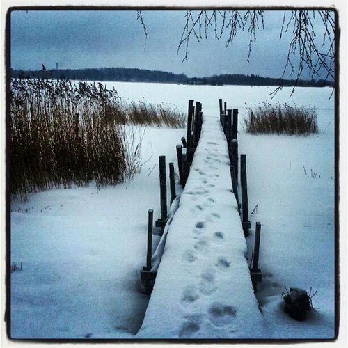 Longing for a dip! Bridge Brygga Ninacombat Winter nature snow icy Sweden nature february perspective tracks