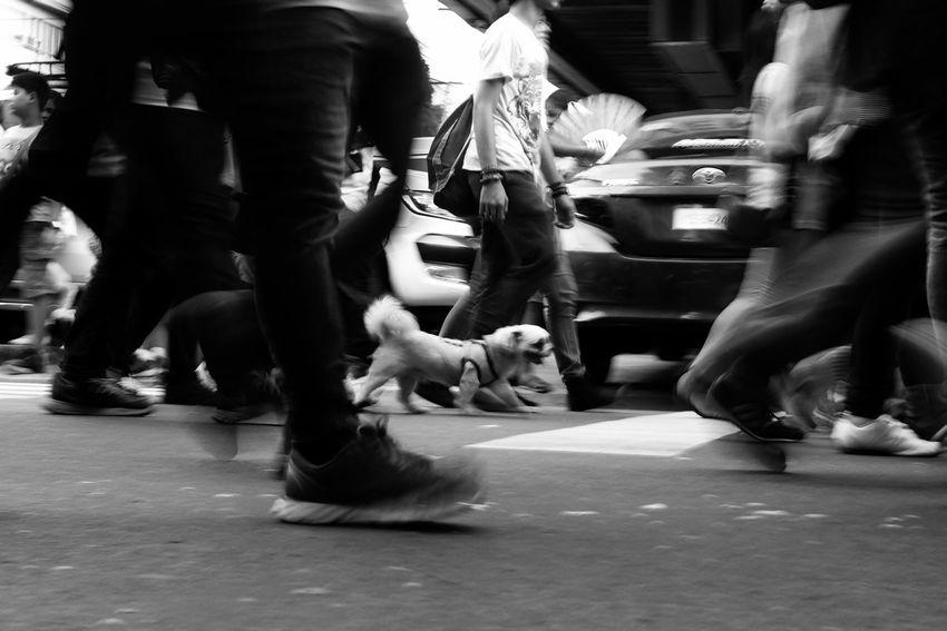 Street Fuji EyeEm Best Shots Eyeem Philippines X100t Fujifilm_xseries FujiX100T X100tfujifilm X100t Fujifilm Fujifilm Mirrorless Street Photography Streetphotography Streetphotographers EverydayStreet Taking Photos