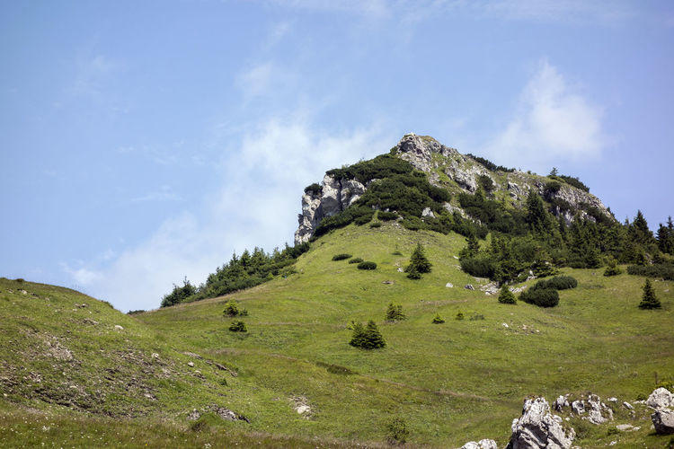 Velka Fatra Beauty In Nature Cloud - Sky Day Environment Field Grass Green Color Land Landscape Mountain Mountain Peak Nature No People Non-urban Scene Outdoors Plant Scenics - Nature Sky Tranquil Scene Tranquility Tree