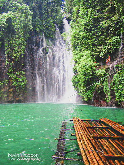 Explored hidden beauty. This stunning waterfall called Tinago Falls is found between the town of Linamon and the city of Iligan in the province of Lanao del Norte, Philippines. Water Tree Motion Waterfall Falling Water Flowing