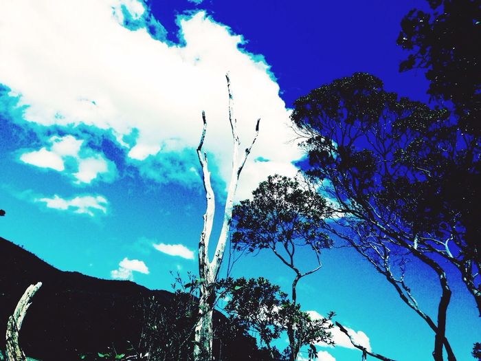 River New Caledonia Sweet Home