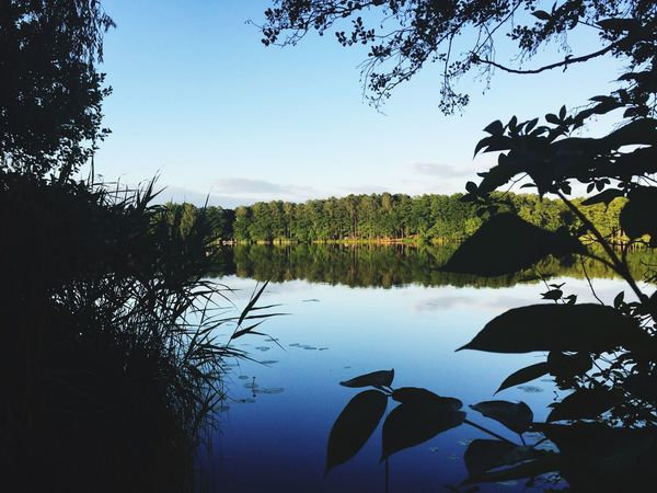 Abends am See Water Silhouette Nature Tree Lake Beauty In Nature Scenics No People Outdoors