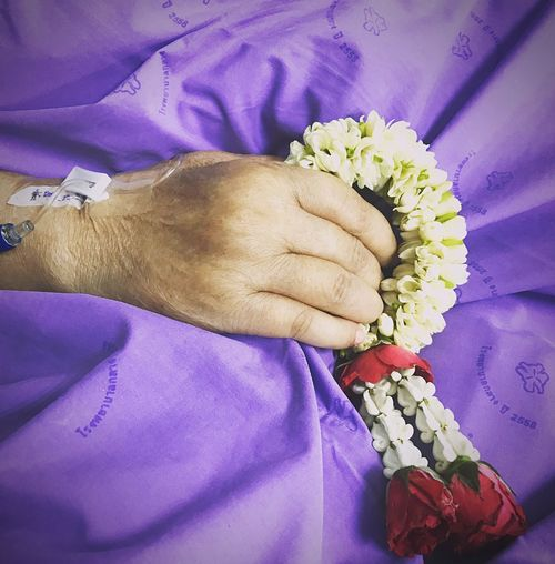My mom. Flower Hand Human Hand Flowering Plant Plant Human Body Part One Person