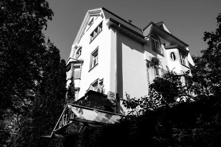 The White House ... Urban Perspectives Street Photography Black & White Monochrome Black And White Architecture Built Structure Plant Building Exterior Low Angle View Tree Sky Nature Building No People Outdoors Day Residential District Clear Sky House Growth Window The Devil's In The Detail