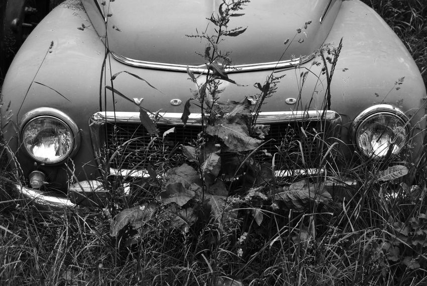 Volvo Volvocars Volvo Pv Black And White Collection  Blackandwhite Sweden Summer Old Gotland Black And White Blackandwhite Photography Monochrome Rustic Old-fashioned Retro Retro Car Retrocar Showcase April Showcase: April