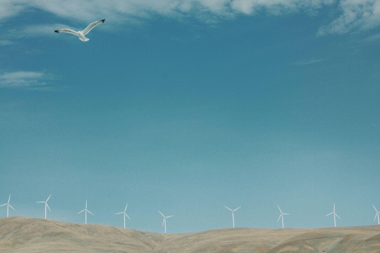 WIND TURBINES ON FARM AGAINST SKY